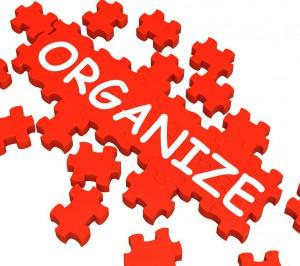 Organize LLC